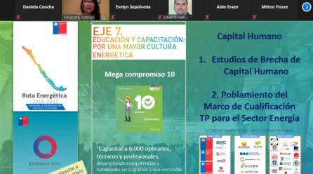 CEIM y Clúster de Energía realizaron webinar sobre energía y capital humano